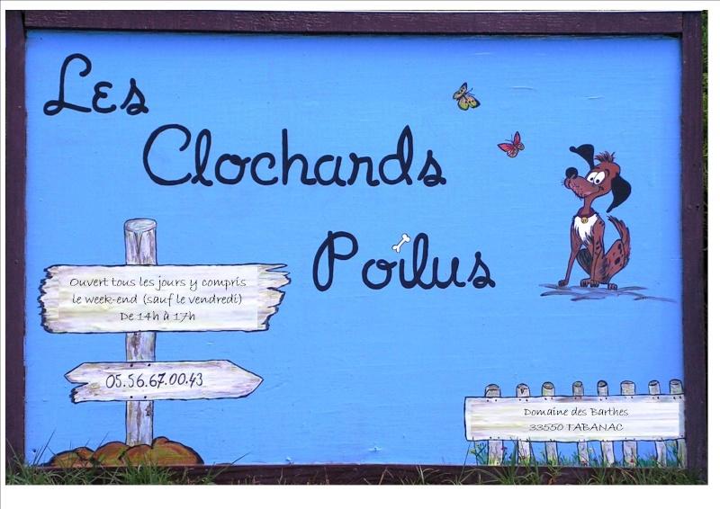 Les Amis du Refuge des Clochards Poilus!