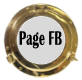 Page Facebook