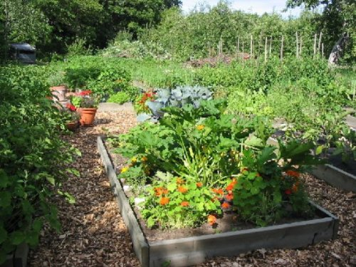 R ussir son potager for Exemple de decoration de jardin