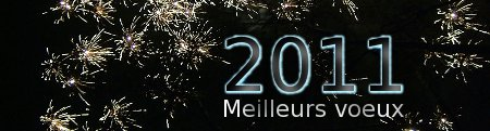 nouvelle année 2011