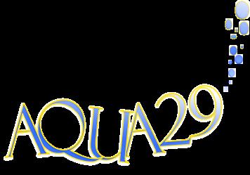 Aqua29