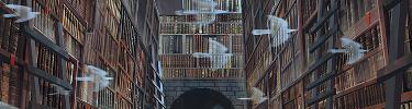 Les livres enchantés