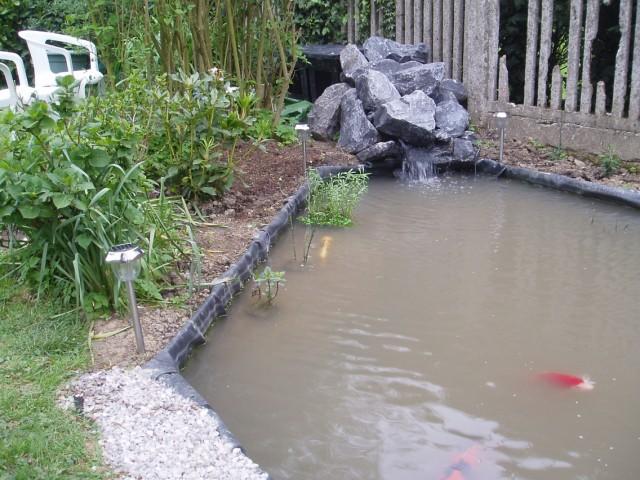 Le forum de Passion Bassin - bassin de jardin, baignade naturelle ...