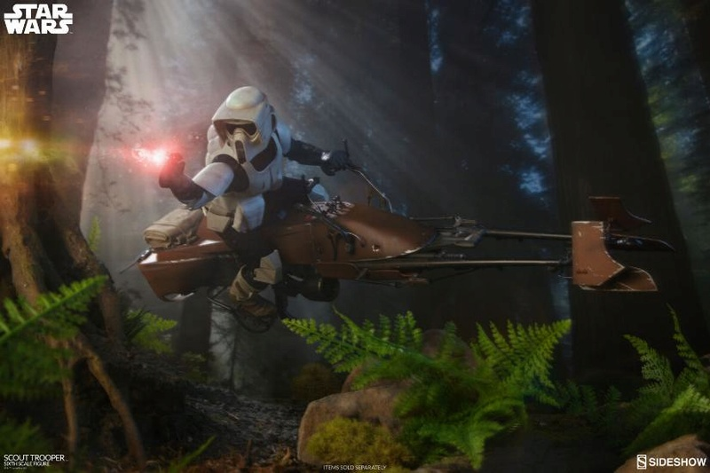 scout-17.jpg
