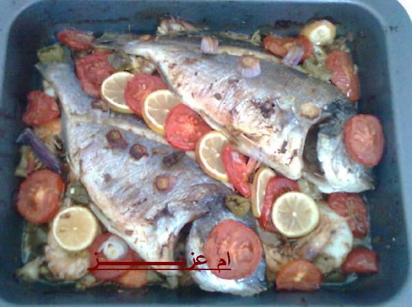 سمك... جمبري...حبار
