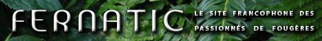 Fernatic, le site des passionnés de fougères