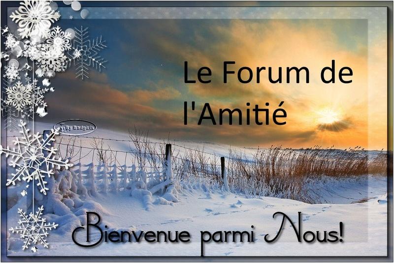 LE FORUM DE L'AMITIE