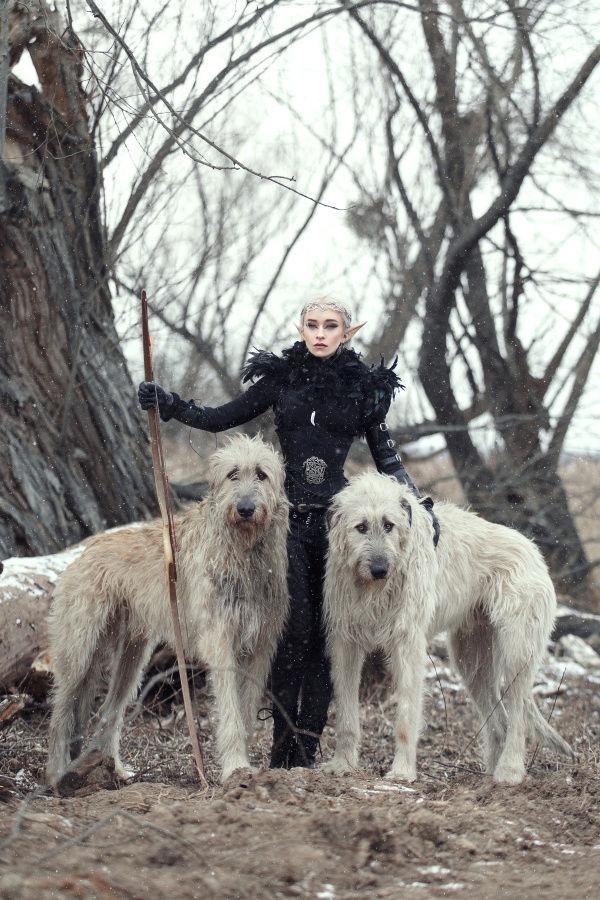 Irish Wolfhound et Deerhound... For Ever
