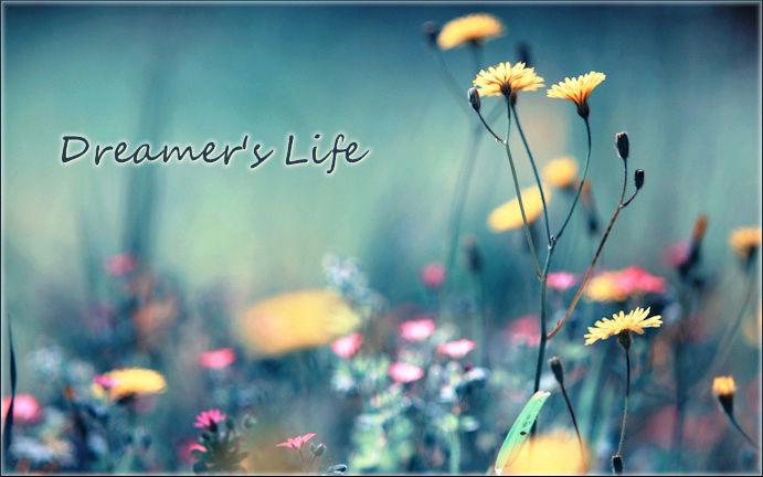 Dreamer's Life