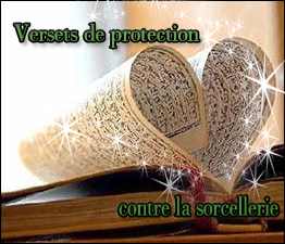 http://i62.servimg.com/u/f62/12/82/90/26/verset13.png