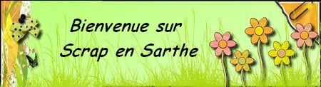 Scrap en Sarthe