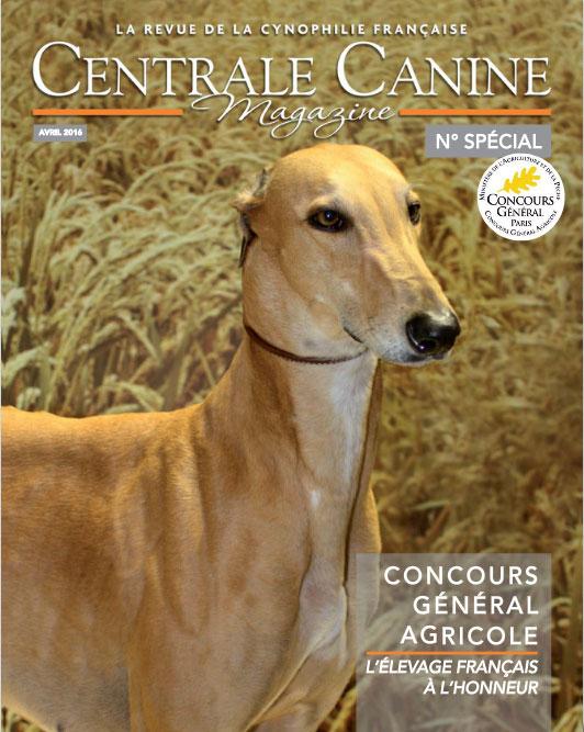 centrale canine magazine