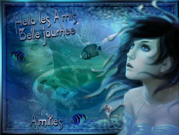 aquari10