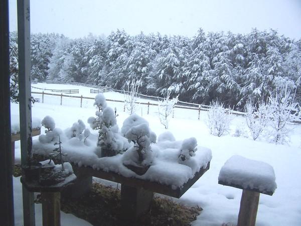 snow_112.jpg