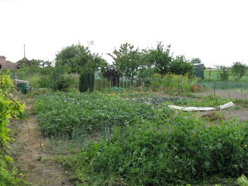 Au potager jardin ouvrier page 3 for Jardin ouvrier