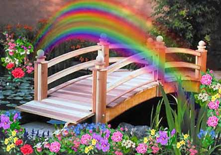 Rainbow bridge forum