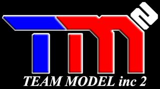 Team Model Inc 2