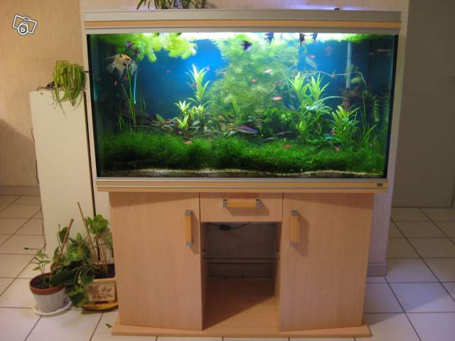 Vend 69 aquarium aqualife rena 350 original for Aquarium rena
