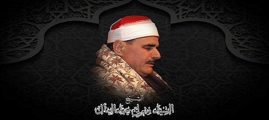 موقع الشيخ السيد متولى عبدالعال