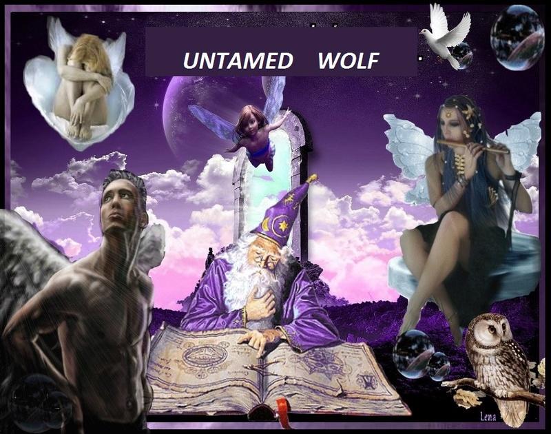 Untamed wolf Blog de poésie.