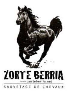 ZORTE BERRIA : Nouvelle Chance