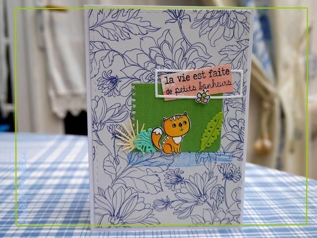 Passion cartes Créatives#534 !