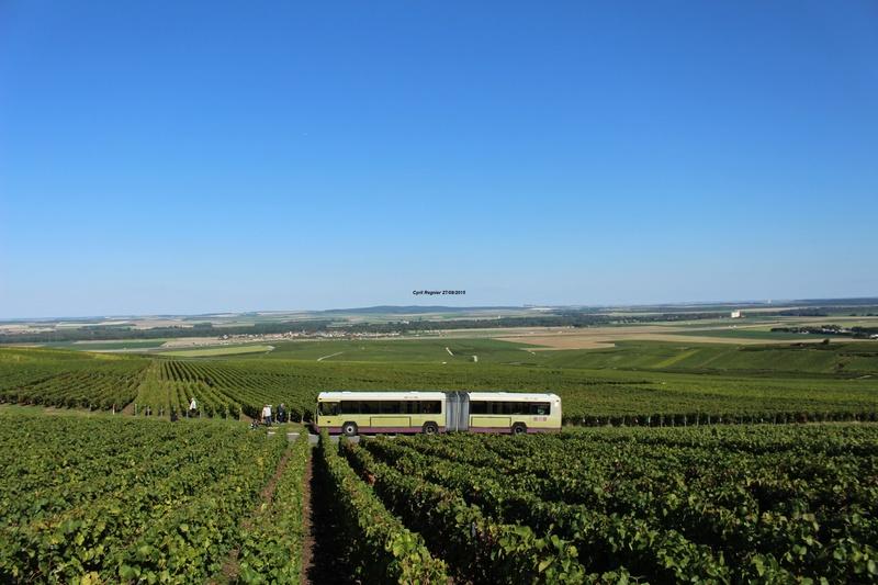 Le 731 en plein milieu des vignes.