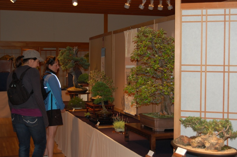 Bonsai Society Of Portland Spring Show