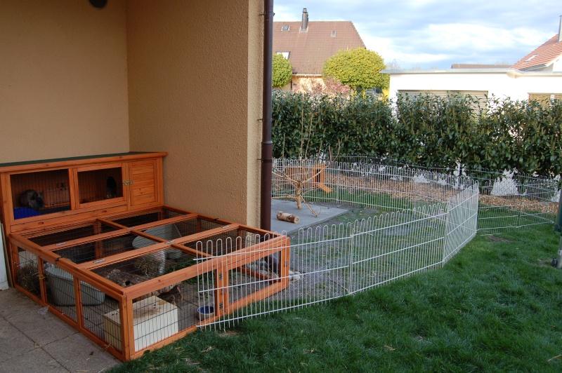Habitation des lapins exemples de cages enclos page 10 - Enclos a lapin ...