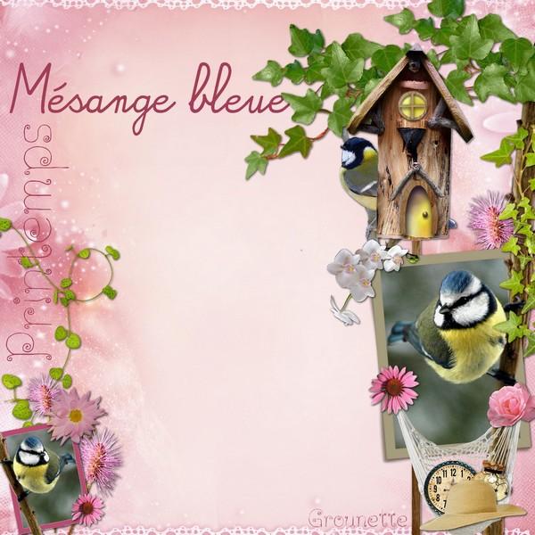 http://i62.servimg.com/u/f62/14/52/88/96/mesang10.jpg