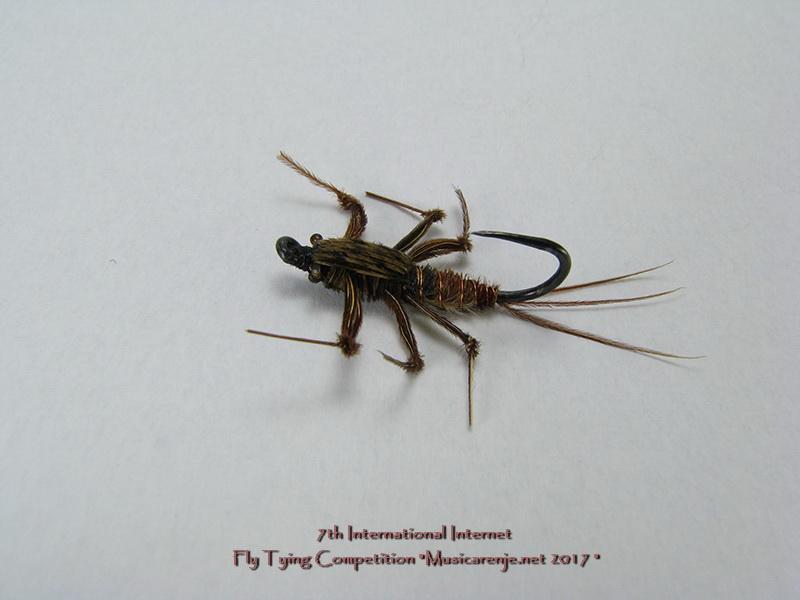 18._GORAN_IKRAEV_-_Caddis_Fly