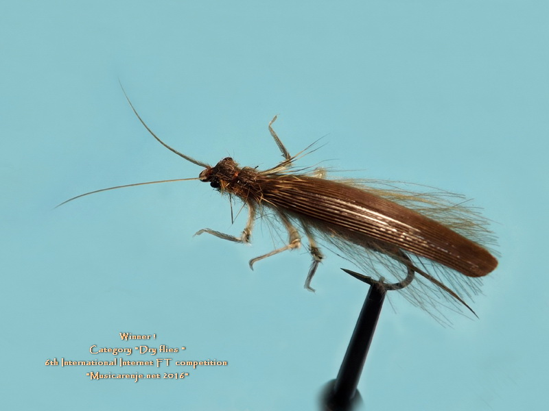1_PLACE_-_DRY_STONEFLY_ADULT_SALE_G._11