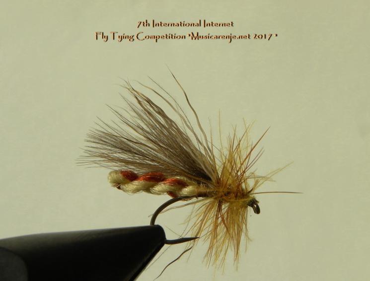 22._NIKOLAY_ENEV__-_Furled_body_stonefly