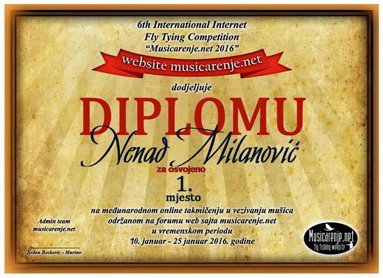 Diploma_Nenad_Milanovic