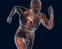 منتدى دكتور خالد أبو الفضل لفسيولوجيا ممارسة الرياضة Exercise Physiology