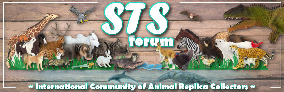 STS Forum