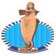 منتدى مرشحين مجلس الشعب المصرى 2011 محافظة البحر الاحمر