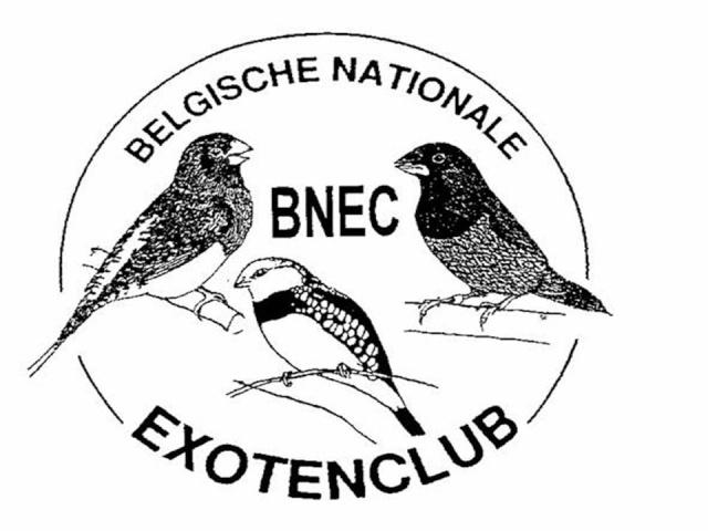 Exotenclub B.N.E.C.