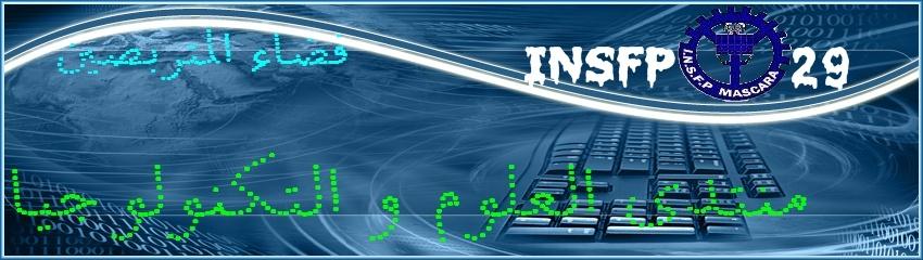 INSFP29