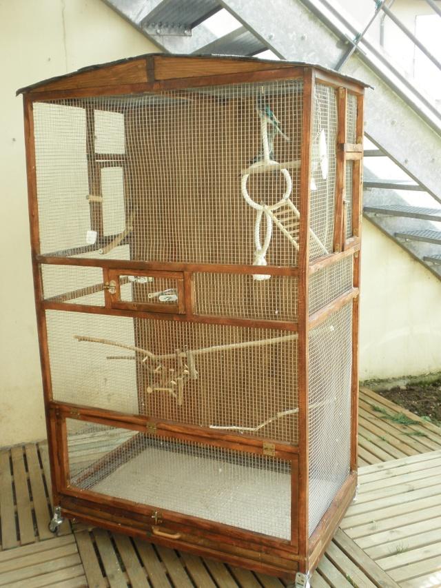 Modeles cages et volieres page 7 for Voliere interieur pour perruche