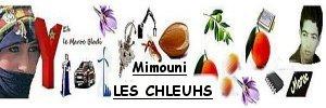 by Mimouni