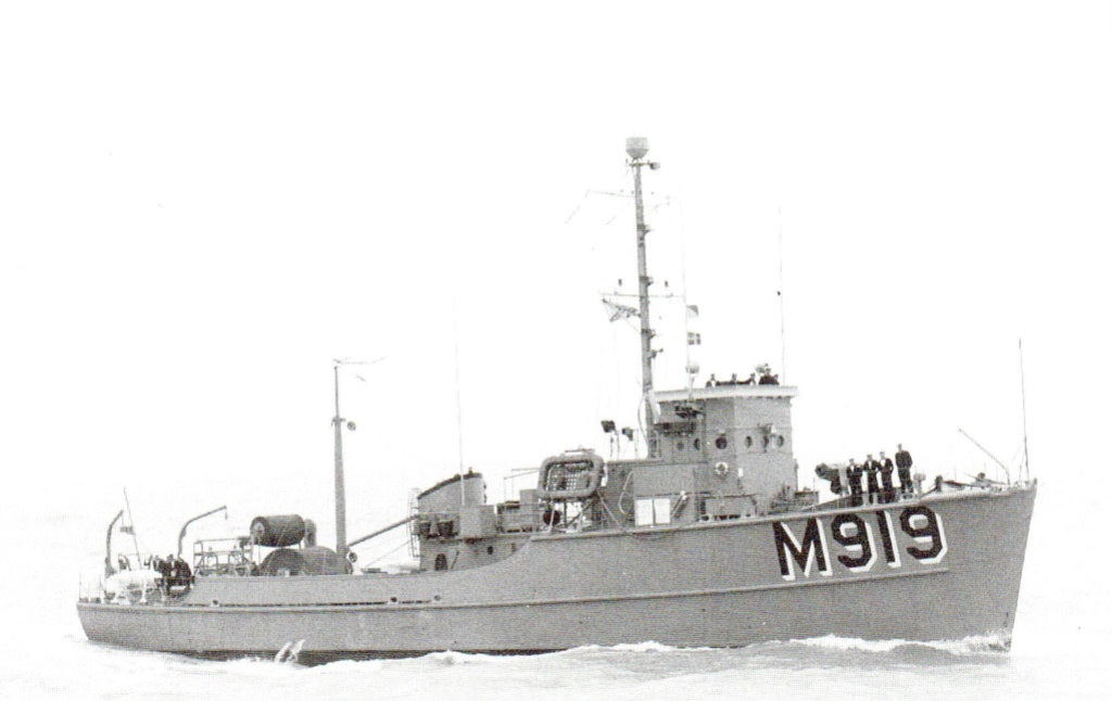 m919_s10.jpg