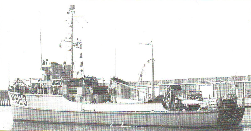 m923-310.jpg