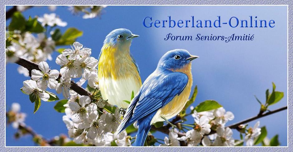 Amicale Gerberland-Online  Carnet suisse Forum Seniors Amitié