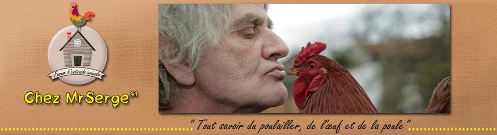 Chez MrSerge91 & Vos Poules