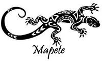logo_m13.png