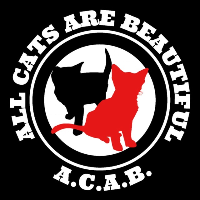 ACAB (ALL CATS ARE BEAUTIFUL)