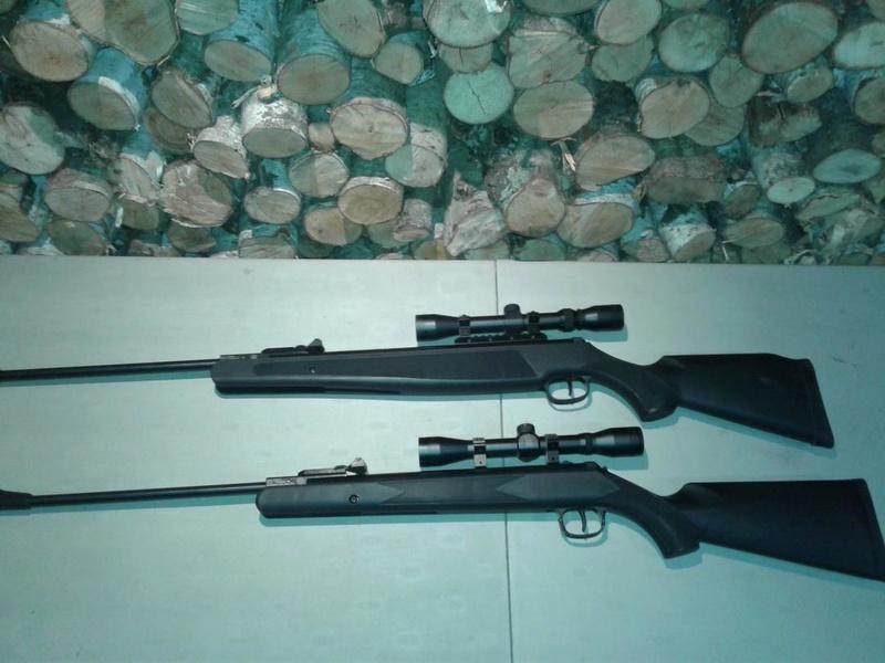 airgun12.jpg