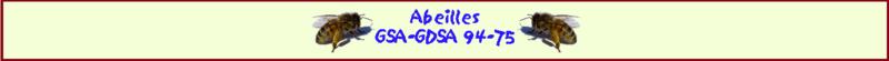 Forum du GSA-GDSA 94-75