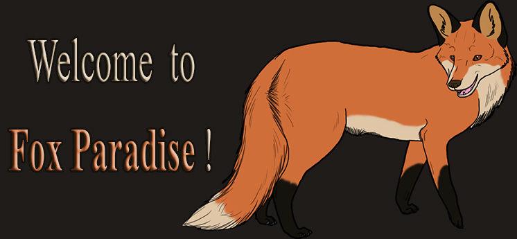 Fox Paradise